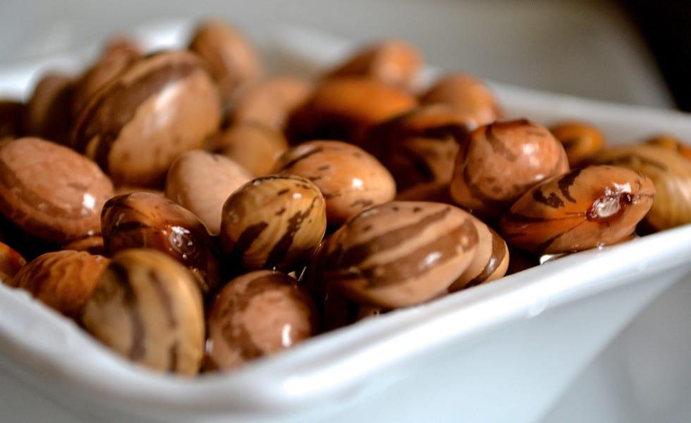 heirloom beans ashley gilday